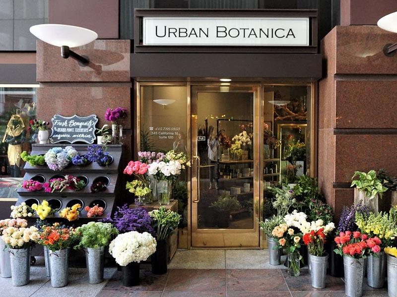 thiết kế shop hoa tươi nhỏ